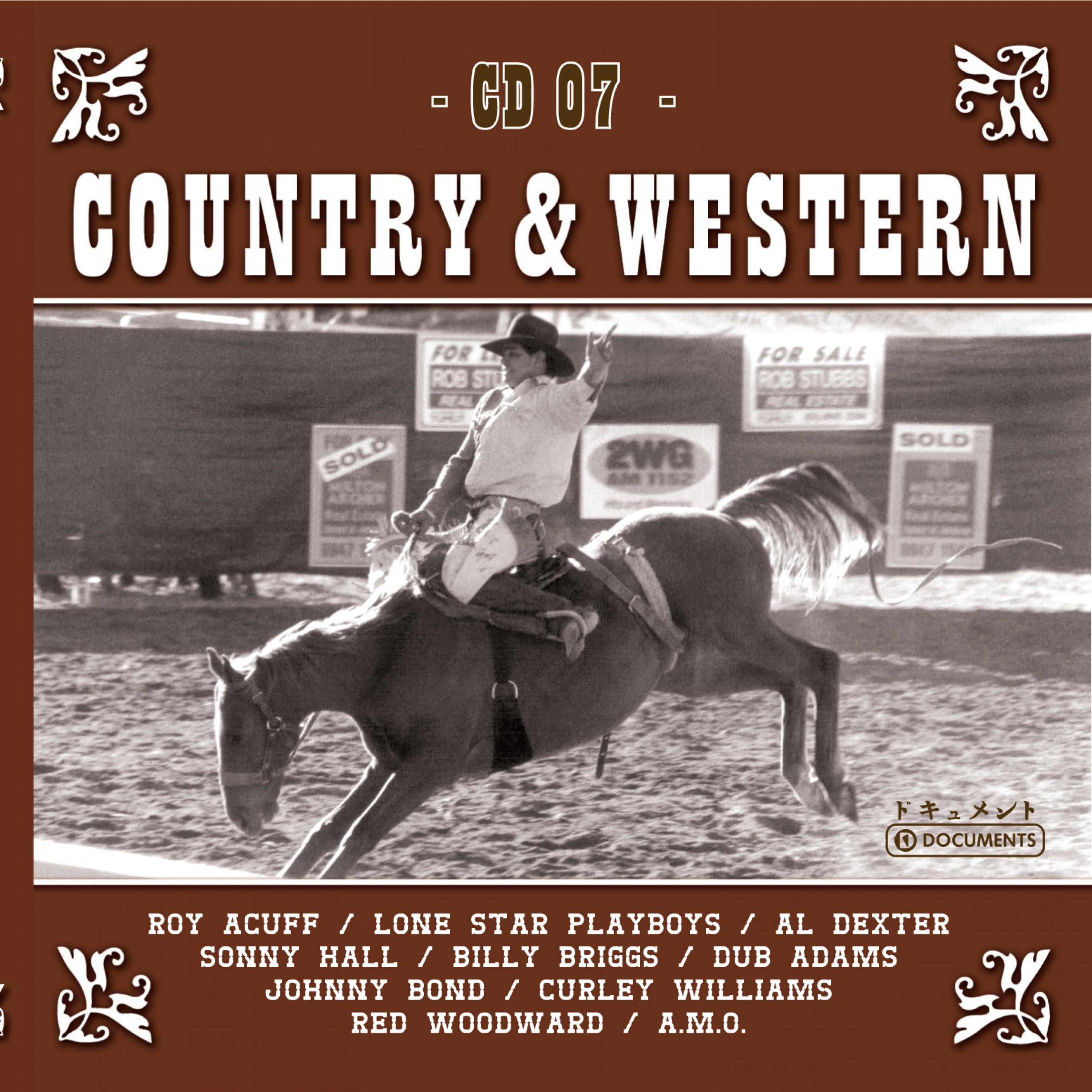 Country Hits Vol. 7